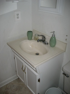 The sink - a vanity style