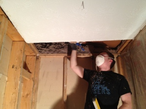 Jim trying to get out any more insulation that may fall before we cleaned