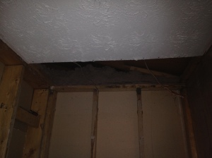 The ceiling all gone above the shower