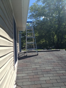 Ladder on the roof of the garage