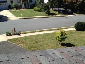 View of the front yard from the roof