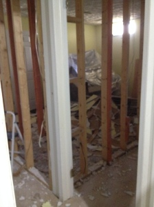 In the middle of demo - drywall gone!