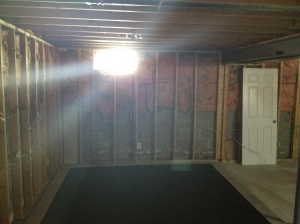 The basement down to the studs...