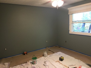 The first paint job...see how it is a greenish/blue grey? Not what I had imagined...