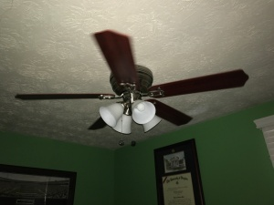 Same fan - lights off